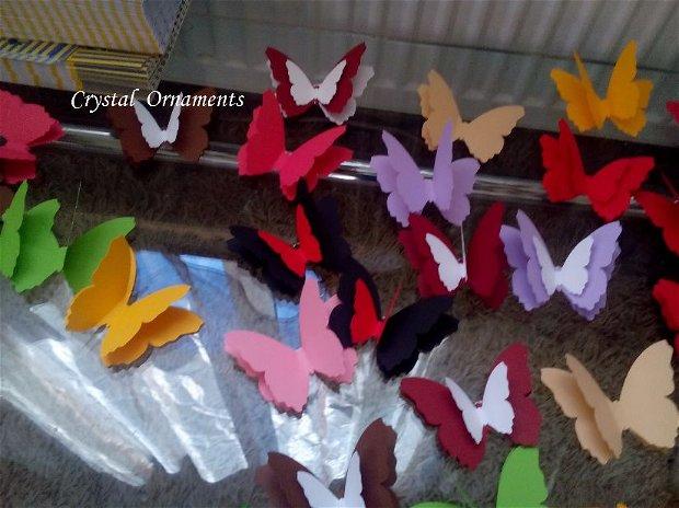 Fluturi decorativi