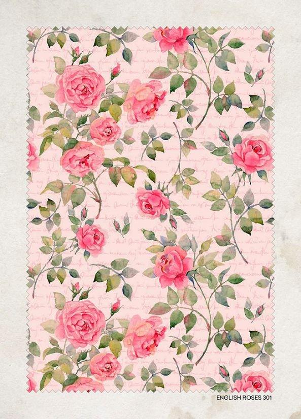 Shabby Roses - 150cm - Lonato - Vintage