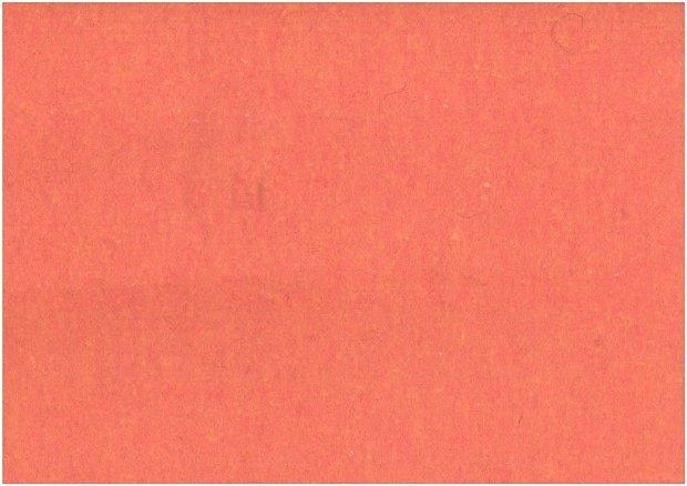 Fetru din lana -50x140cm- somon