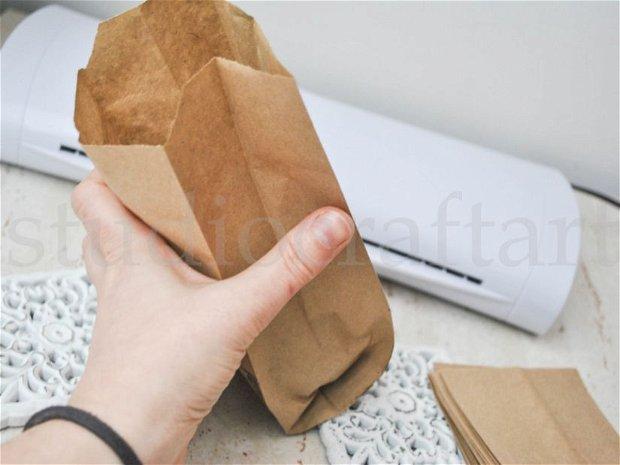 25b. Pungute hartie reciclata