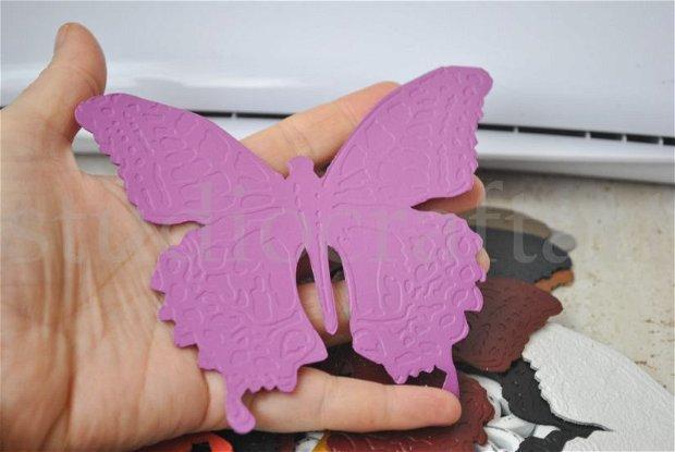 7b Fluturi mari din piele