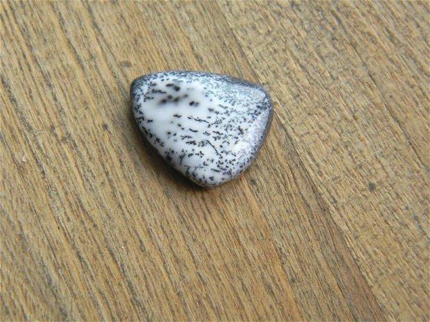 Caboson opal dendritic (C46)
