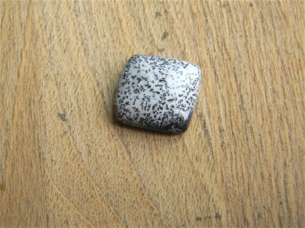 Caboson opal dendritic (C22)