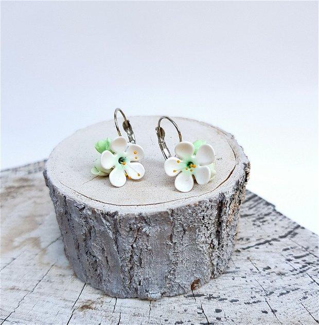 Set flori de corcodus