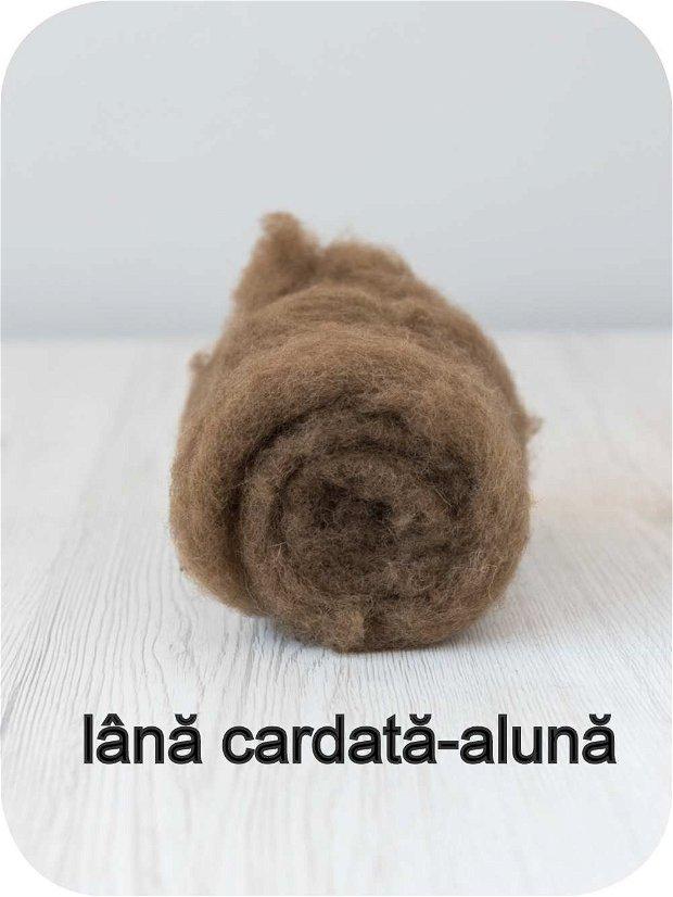 lana cardata-aluna