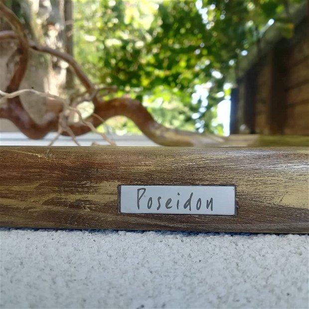 """""""Poseidon"""""""