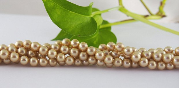 Perle seashell 6mm, cod P04 (1)