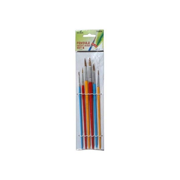 Set 6 pensule sintetice 2-4-6-8-10-12