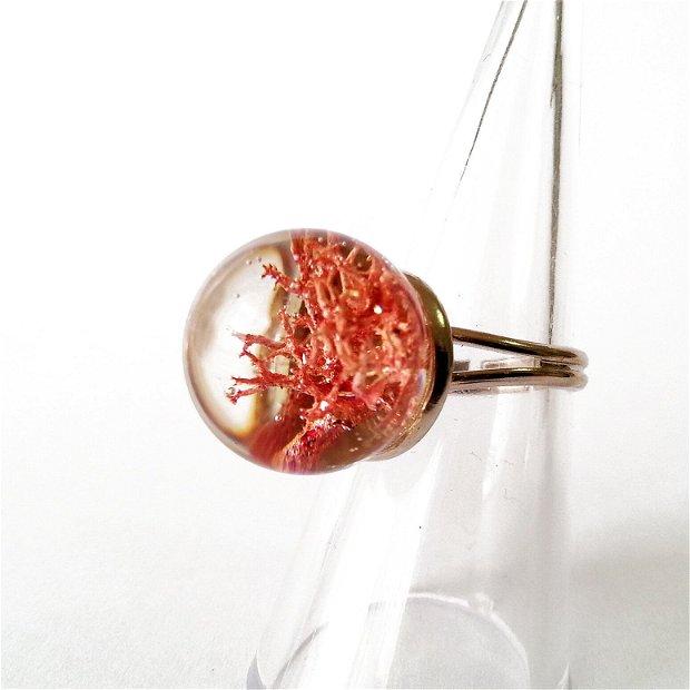 Inel glob cu lichen, plante uscate, bijuterii din rasina, statement, EmilyRay