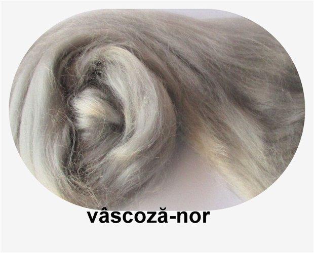 vascoza-nor