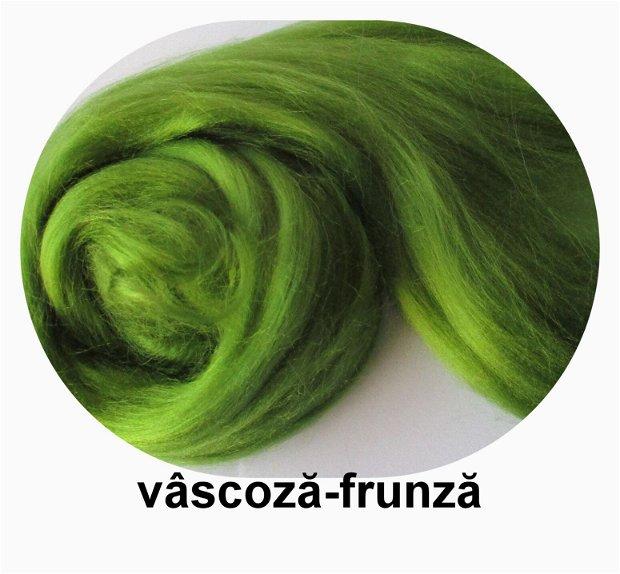 vascoza-frunza