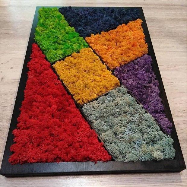 Tablou licheni Rainbow