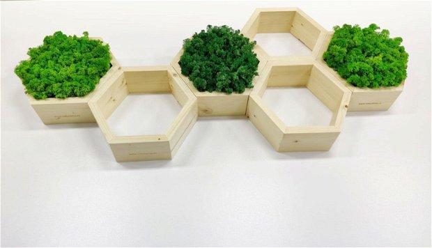 Rama hexagonala din lemn MODEL 2