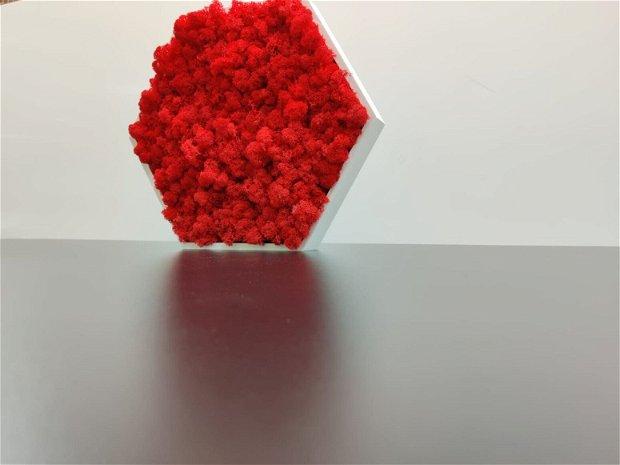 Rama hexagonala alba din PVC