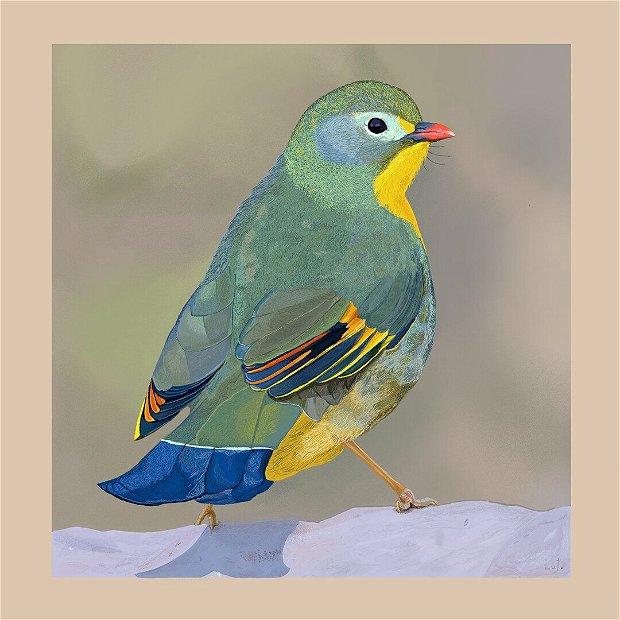 Print ilustrație digitală pasăre