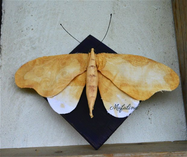 Decoratiune Moth