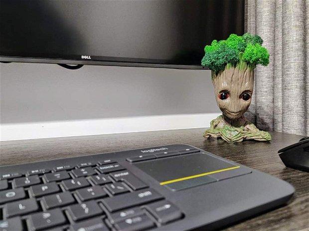 Baby Groot   I am Groot cu licheni