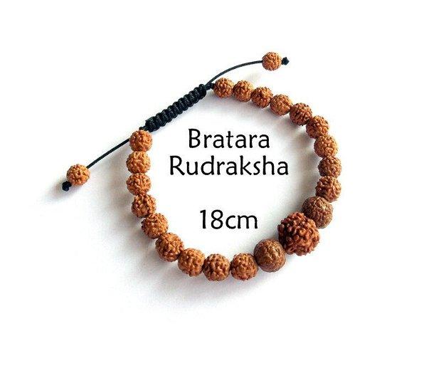 Bratara Rudraksha*Bratara Reglabila