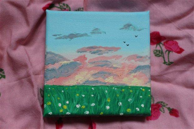 Pictura cer