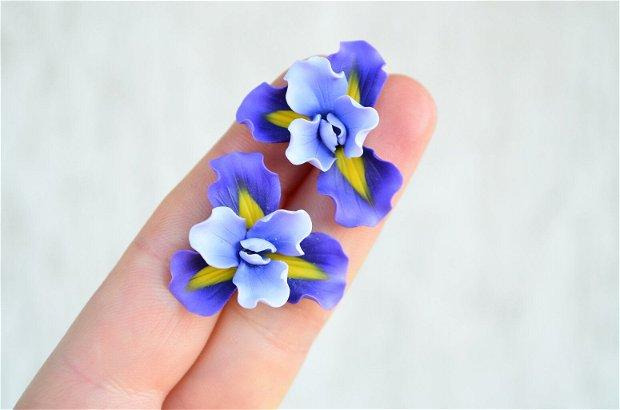 Irisul mov- cercei surub