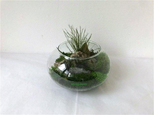 O lume in miniatura