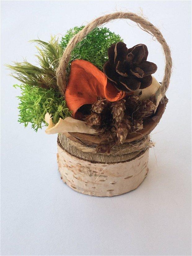Mini Cosulete cu licheni/martisoare/marturii/cu elemente naturale/plante uscate/licheni stabilizati/muschi naturali/plante uscate/mini conuri/rondele mesteacan