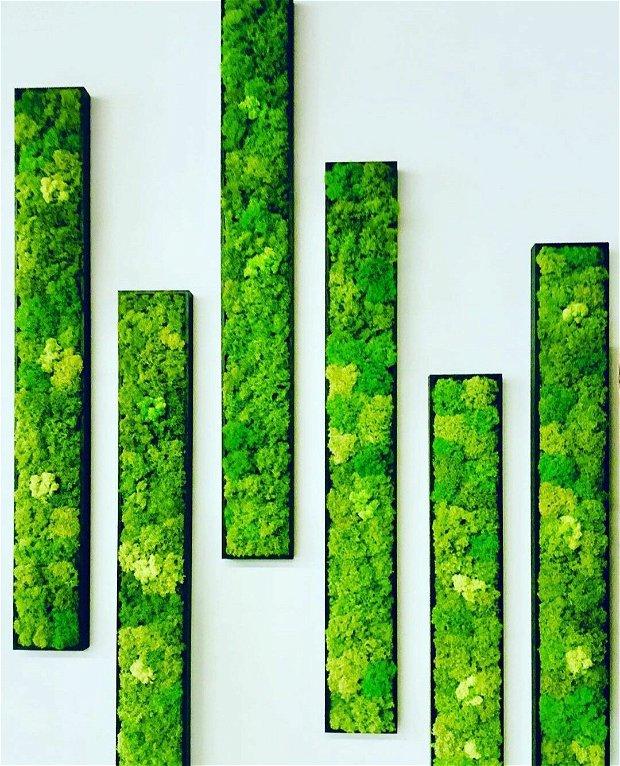 Tablou licheni verde deschis 100x15