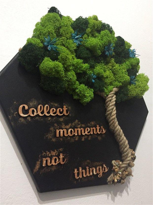 Tablou decorativ licheni cu mesaj