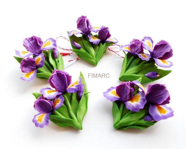 Irises (Stânjenel) - brose