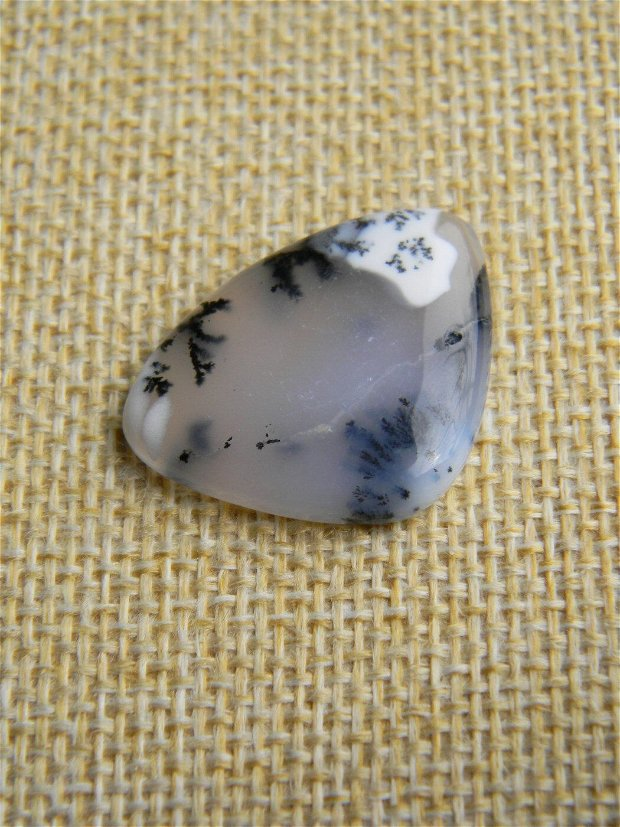 Caboson opal dendritic (C34)