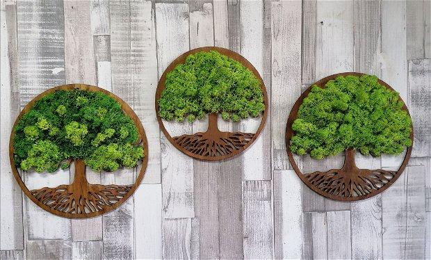 Copacul vietii cu licheni