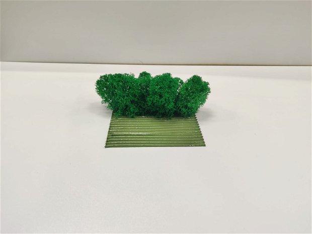 Adeziv pentru licheni