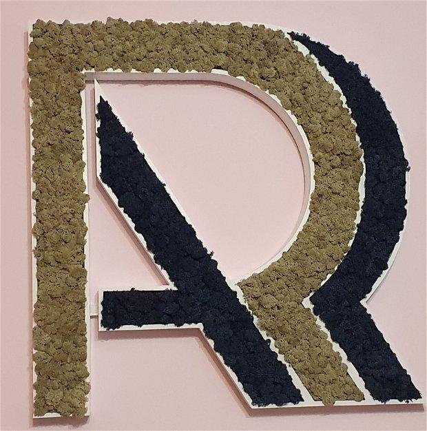 Logo / sigla companie
