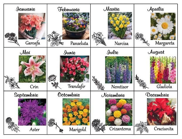Colecția floral Aprilie