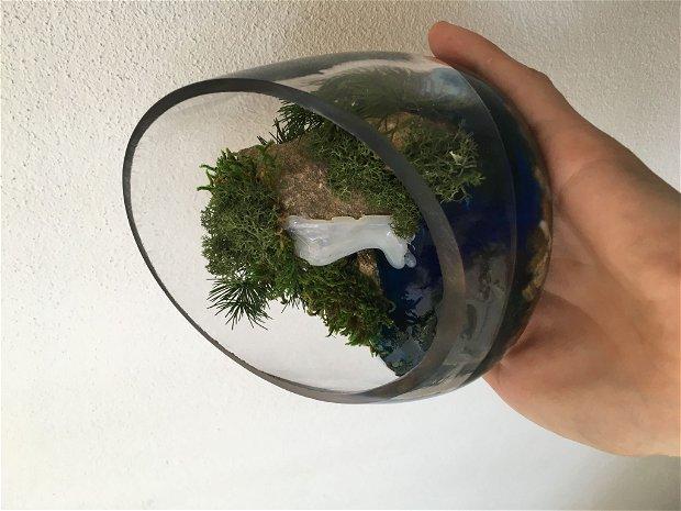 Terrarium 3D