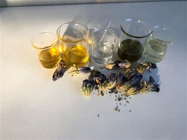 Ulei de samburi struguri presat la rece -