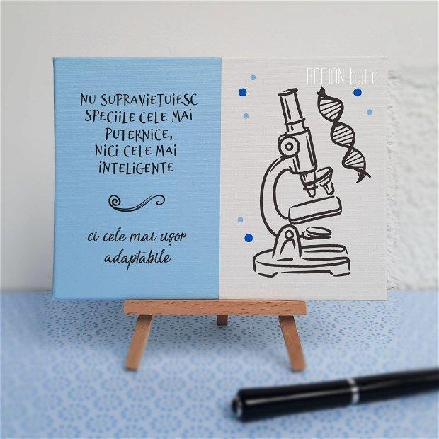 Placuta absolvire biologie pictata personalizata cu mesaj