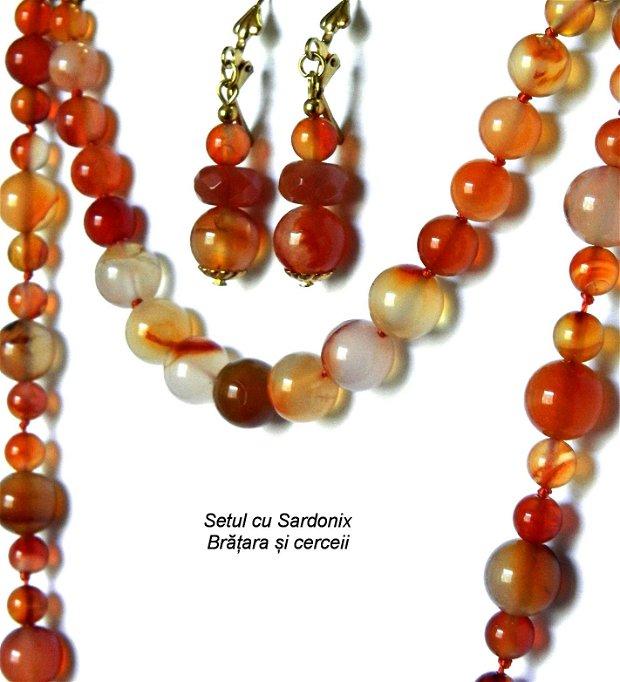Sardonix REZERVAT (013)