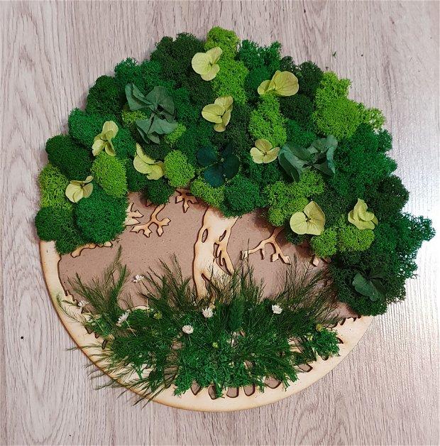 Copacul vietii licheni