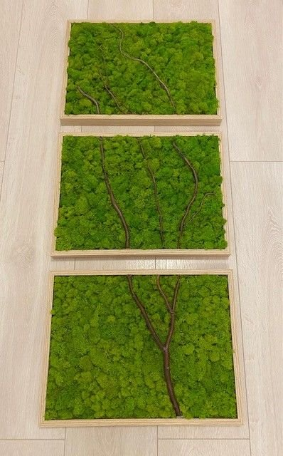 Tablou personalizat cu licheni 100 cm x 75 cm
