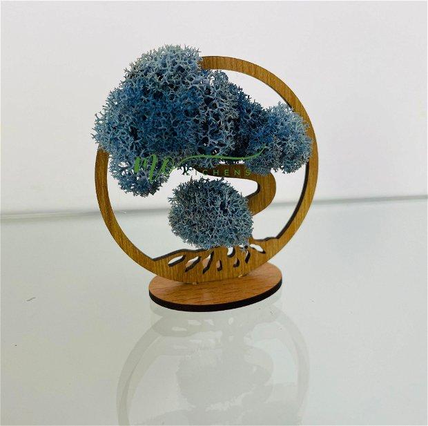 Mărturii cu licheni stabilizați