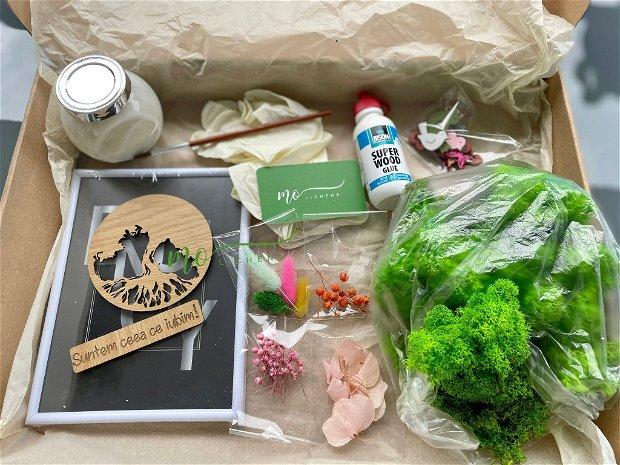 Kit cu licheni pentru activități în familie sau pentru un cadou unic
