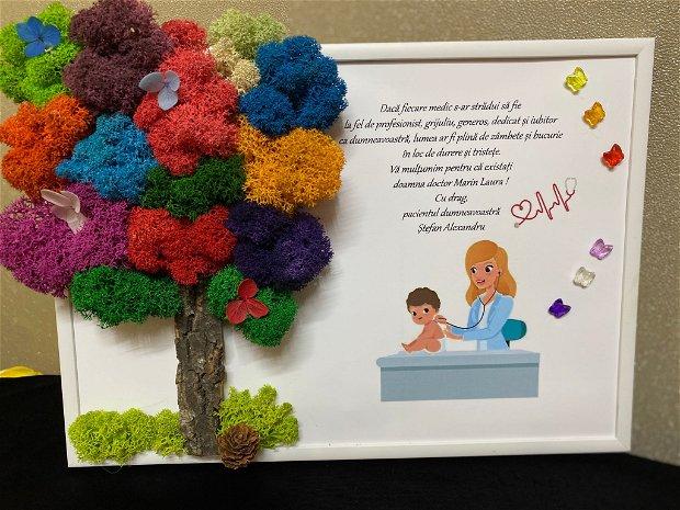 Tablou personalizat, cu licheni si mesaj pentru medic