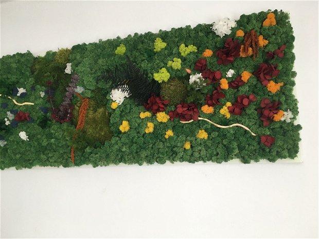 Tablou cu plante stabilizate