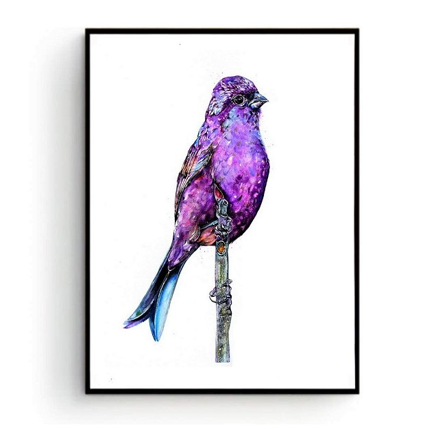 Purple Bird- Tablou, Pictura Originala in Acuarela - Birds Collection