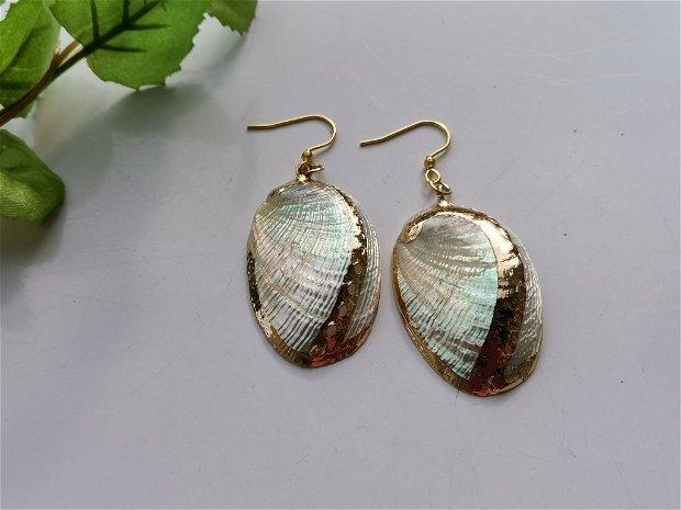 Cercei shell(2)
