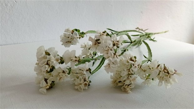 Buchet flori statice Alb și Roz (Limonium sinuatum),80 g/pachet-40 cm